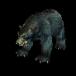 Black_bear_icon.png
