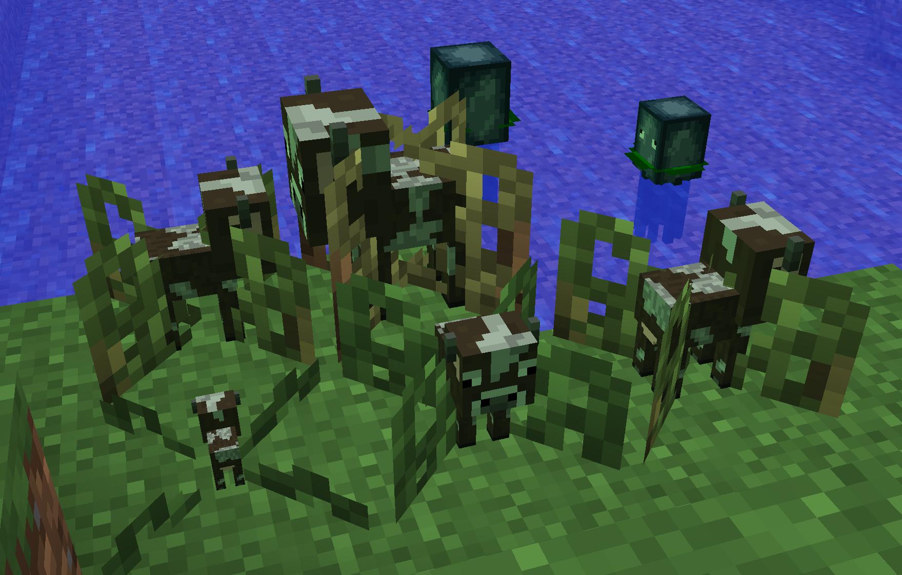 Cow crops growing
