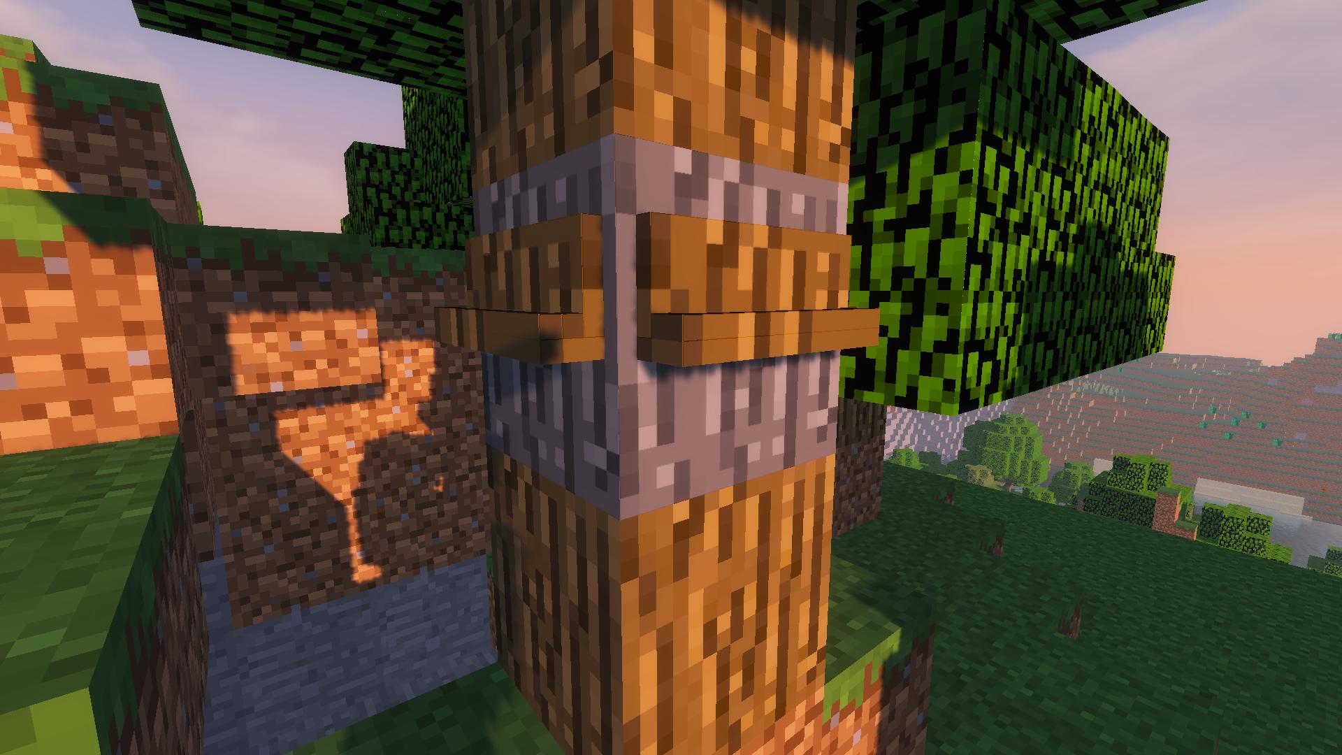 A Treetapped Log.