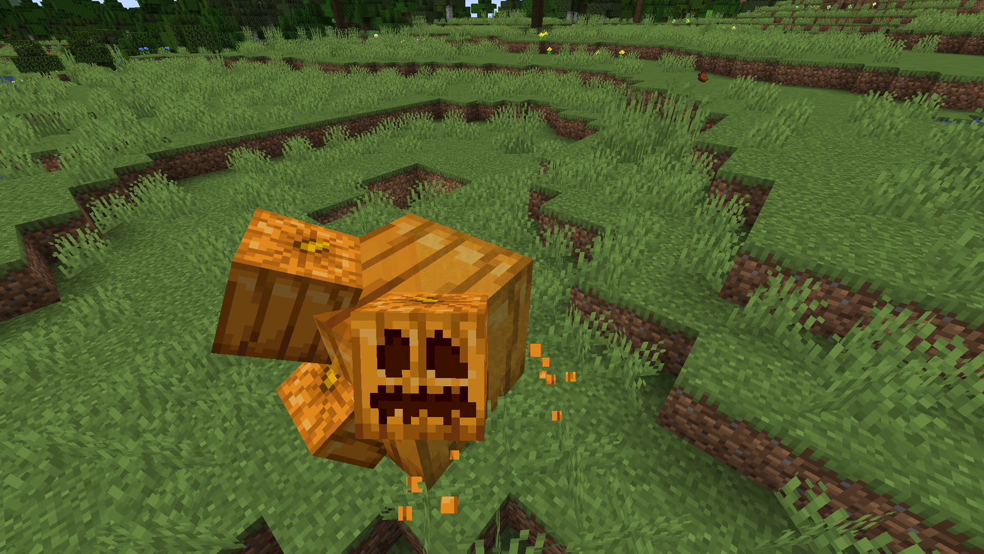 A mutated pumpkin