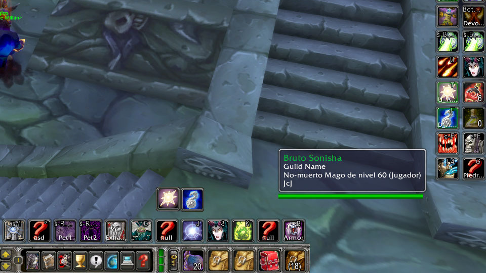 The WoW Classic Tooltips with guild name added with GuidInTooltip addon