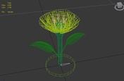 flower_wireframe.jpg