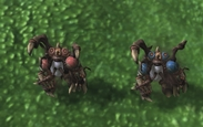 infested firebat missing texture