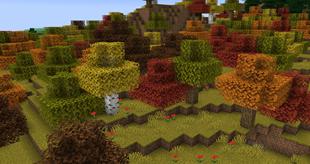 Биом Осенние леса