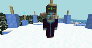 The ice wizard.