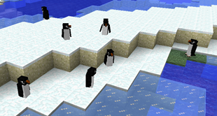 wild_penguins_beach.png
