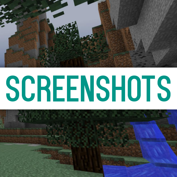 minecraft how to add screenshots