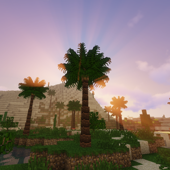 Overview Dynamic Trees Biomes O Plenty Compat Mods Projects