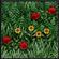 SoartexFanver's avatar