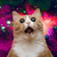 LeChatAstronomique's avatar