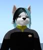 Scootz's avatar