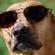 Fooinfinity's avatar