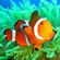 View Clownfish8888's Profile