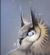 yukiforever's avatar