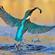 Robijnvogel's avatar