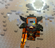 Rixsaw's avatar