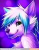 ced_the_fox's avatar