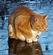 GatoGamer887's avatar