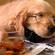 InsomniaKitten's avatar
