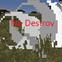 NoDestroy