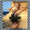 Hot Beach Party Login