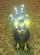 rosapetals's avatar