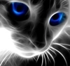 View Blueyescat's Profile