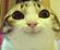 N4TH4NOT's avatar