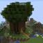 Flying Tree Starter House