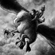 View toyhippogriff's Profile