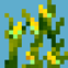 Simple Corn