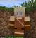 rlmilton's avatar