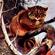 Katvrouw's avatar