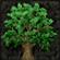 Ovocean's avatar