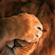 ashly138's avatar