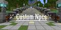 Custom NPCs